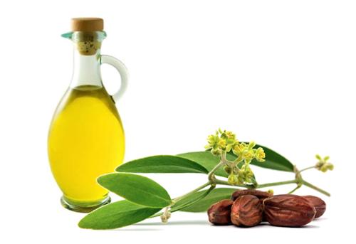 Nhờ có chứa nhiều collagen nên tinh dầu Jojoba có khả năng trị sẹo lõm hiệu quả