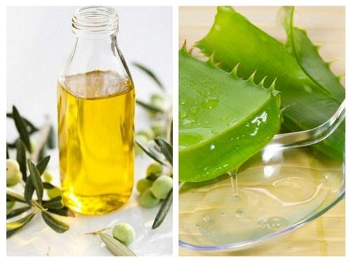 Kết hợp dầu oliu với nha đam để hỗ trợ điều trị mụn hiệu quả