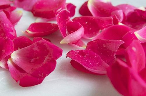 Trị tàn nhang bằng cánh hoa hồng hiệu quả tại nhà