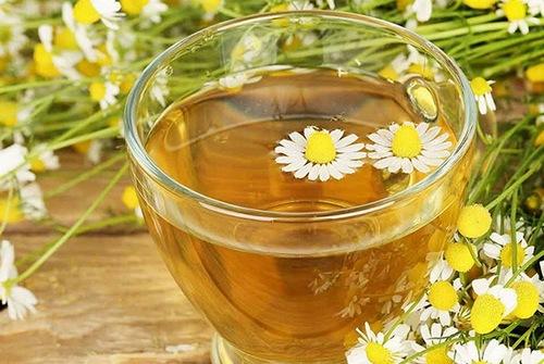 Tẩy lông vùng kín hiệu quả - an toàn bằng trà hoa cúc