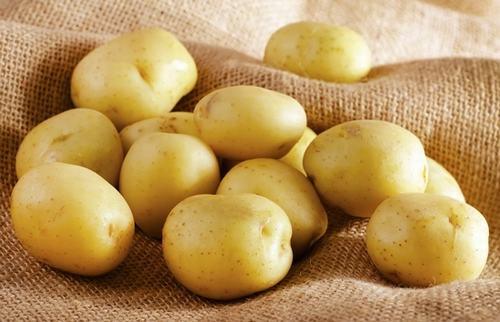 Công thức triệt lông bằng khoai tây vừa đơn giản, tiết kiệm lại tiện lợi nên được rất nhiều người áp dụng