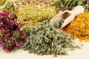 Tổng hợp các bài thuốc thảo dược Đông y trị nám và tàn nhang