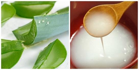 Nha đam hỗ trợ đào thảo melamin nên là cách trị tàn nhang được nhiều người áp dụng