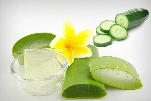 Nha đam chứa Aloe Emodin giúp loại bỏ tàn nhang, chống lão hóa và cung cấp độ ẩm cần thiết cho da.