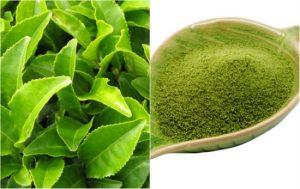 5 công thức dùng trà xanh trị tàn nhang hiệu quả bất ngờ
