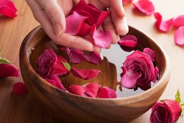 Cánh hoa hồng rất an toàn cho làn da, lại có tác dụng làm mềm môi rất hiệu quả.