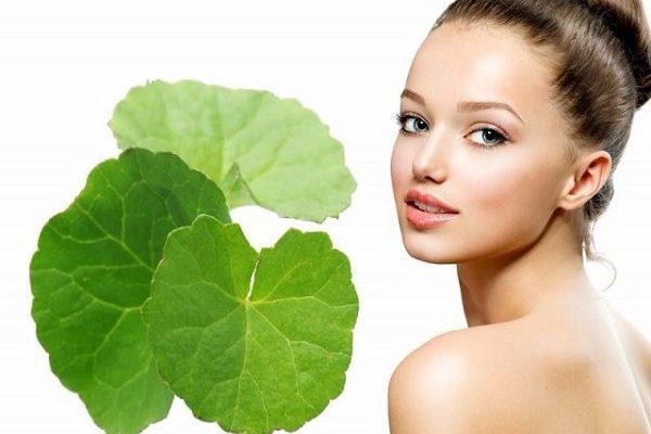 Rau má  thúc đẩy sự phát triển của da và ức chế hoạt động của melanin gây nám hiệu quả.