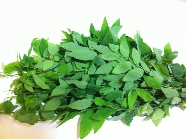 Lá rau ngót chứa nhiều thành phần dưỡng chất có công dụng dưỡng ẩm, làm mờ vết thâm, đồng thời dưỡng da sáng mịn.