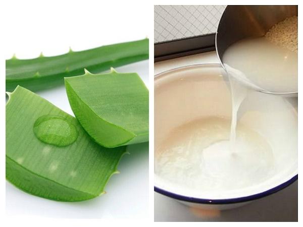 Nha đam và nước vo gạo đều là những nguyên liệu làm đẹp rất quen thuộc của các chị em.