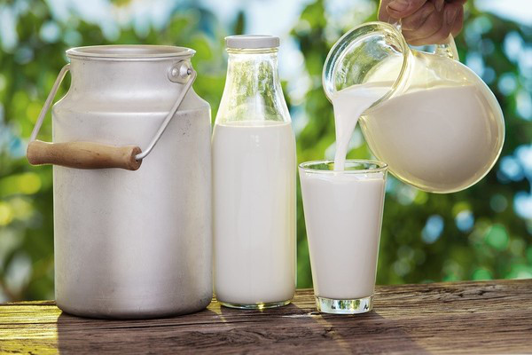 Mặt nạ sữa non nguyên chất rất an toàn nên thích hợp sử dụng cho mọi loại da mà không gây kích ứng.