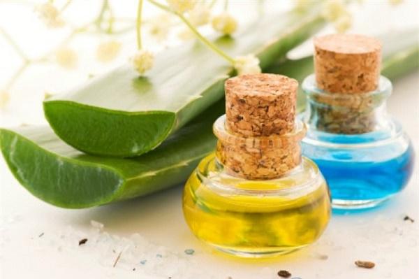 Phương pháp trị rạn da từ dầu thầu dầu và gel nha đam được các chị em áp dụng rất phổ biến.