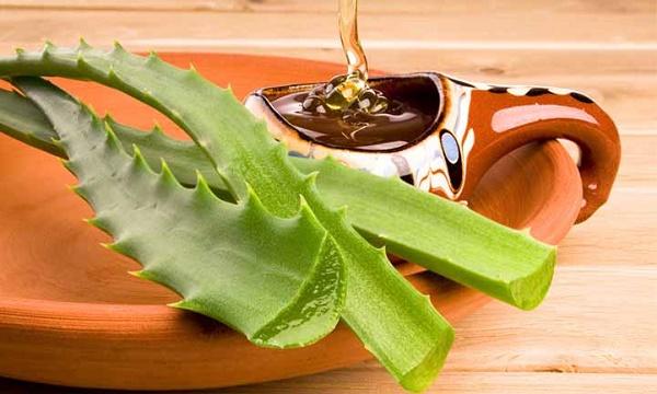 Hỗn hợp nha đam và mật ong vừa giúp cải thiện da mặt chảy xệ, vừa giúp se khít lỗ chân lông.