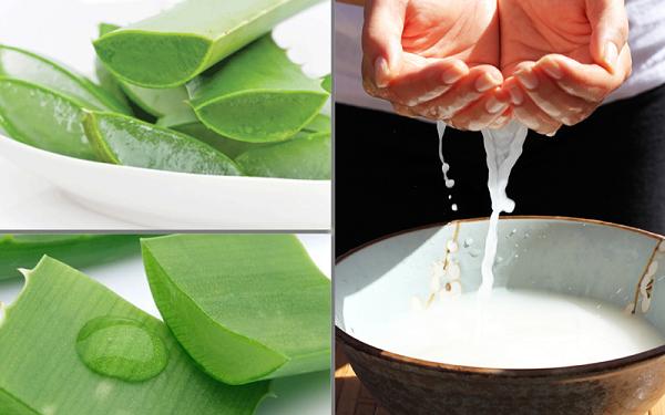 Gel nha đam và nước vo gạo giúp ngăn chặn sự hủy hoại của da khi bị lão hóa và trị tàn nhang hiệu quả.