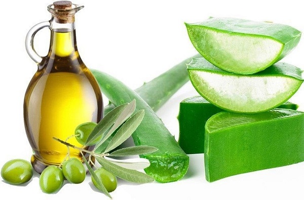 Mặt nạ từ dầu oliu và gel nha đam không chỉ có tác dụng loại bỏ nám mà còn giúp chống lão hóa da.