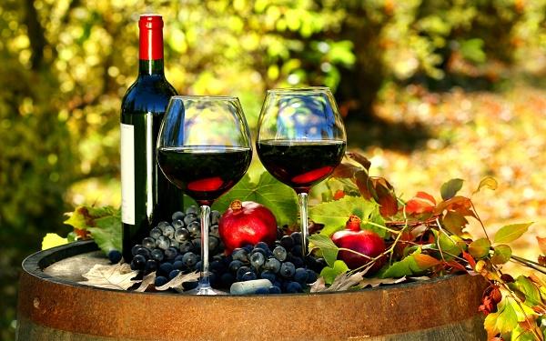 Rượu vang có thể phục hồi collagen và sợi đàn hồi trong da, giúp ngăn chặn quá trình lão hóa da.